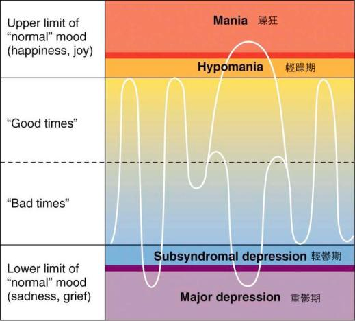 bipolar-disorder-fig6_large