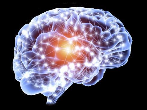 brain-connections-concept-illustration